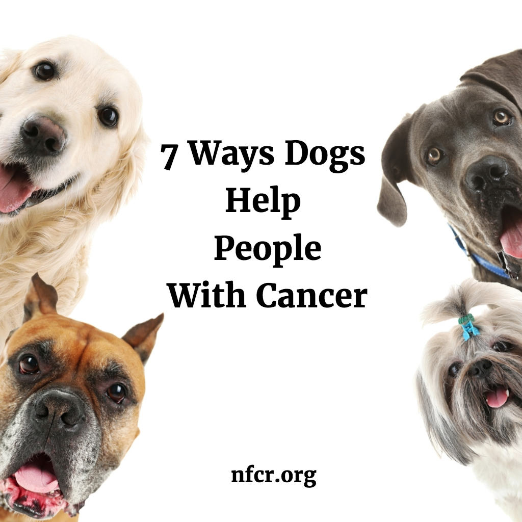 What Types Of Cancer Can Dogs Smell