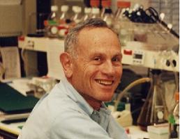 Michael B. Sporn, M.D.