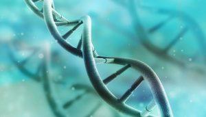 Epigenetics Methylation and CancerImage