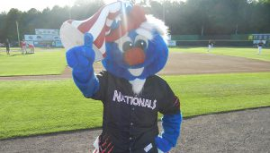Potomac Nationals Uncle Slam