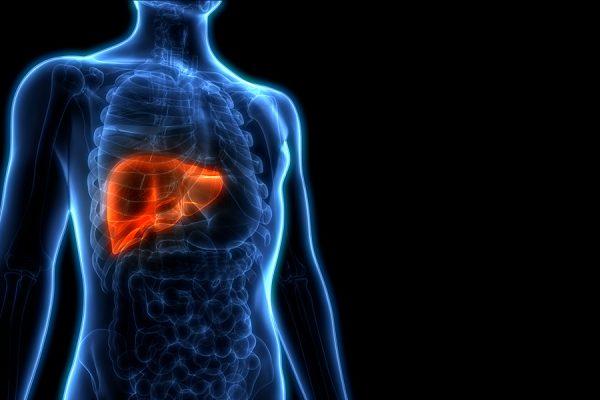 Liver Cancer A Primer