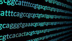 Cancer genomic