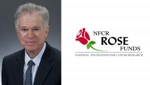 Sandy Hillsberg rose fund