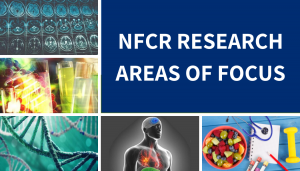 NFCR research areas of focus