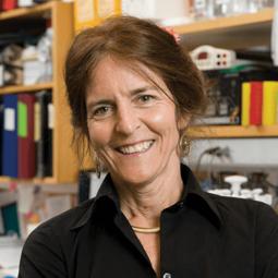 Jean Bennett, M.D., Ph.D.